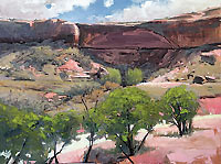 7 Mile Canyon by Antonio Savarese