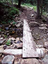 Photo of a wooden plank for easier stream crossing