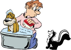 Graphic of man giving dog a bath while skunk watches